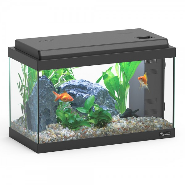 chauffage aquarium 20l