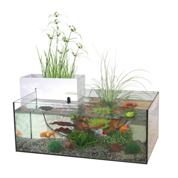 aquarium d coratif marina mini pond blanc. Black Bedroom Furniture Sets. Home Design Ideas